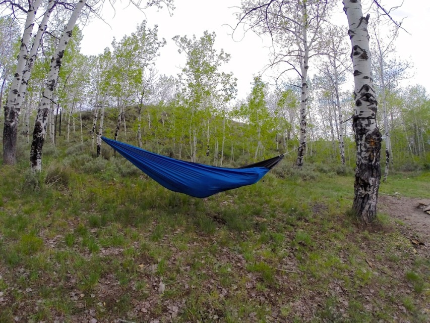 Medium image of 11 u0027 single hammock
